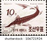 Small photo of DPR KOREA - CIRCA 1990: A post stamp printed in DPR Korea (North Korea) shows sturgeon (Acipenser mikadoi), circa 1990
