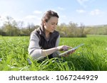 agronomist in crop field using... | Shutterstock . vector #1067244929
