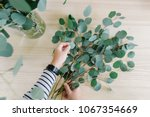 florist at work  woman making... | Shutterstock . vector #1067354669