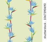 tropical flower bird of... | Shutterstock .eps vector #1067390690