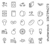 thin line icon set   plank... | Shutterstock .eps vector #1067396273