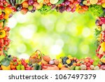 frame of fruits and vegetables... | Shutterstock . vector #1067497379
