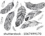 set of feathers vector... | Shutterstock .eps vector #1067499170