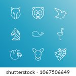 zoo icon set and leopard with...