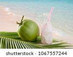 drink coconut water  coconut... | Shutterstock . vector #1067557244