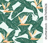 tropical flowers  jungle leaves ... | Shutterstock .eps vector #1067640626