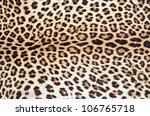 Tiger Skin Pattern Closeup For...