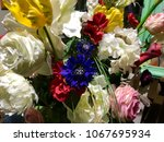 multicolored flowers symbol of... | Shutterstock . vector #1067695934