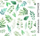 seamless pattern with... | Shutterstock . vector #1067724428