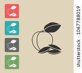 apricot   vector icon . symbol...