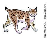 Lynx  Bobcat Vector Image...