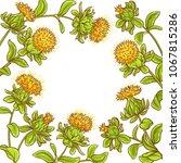 safflower plant vector frame | Shutterstock .eps vector #1067815286