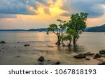 andaman beach sunset with moody ... | Shutterstock . vector #1067818193