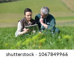 couple of farmers in field... | Shutterstock . vector #1067849966