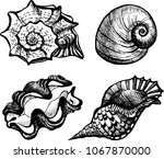 the coloring book set of... | Shutterstock .eps vector #1067870000
