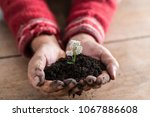 gardener holding a handful of... | Shutterstock . vector #1067886608