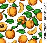 apricot seamless pattern.... | Shutterstock .eps vector #1067898620