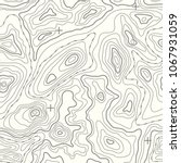 seamless vector topographic map ... | Shutterstock .eps vector #1067931059