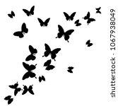 black butterfly  isolated on a... | Shutterstock . vector #1067938049