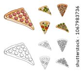 a slice of pizza with different ...   Shutterstock .eps vector #1067983736