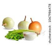 fresh  nutritious  tasty onion. ... | Shutterstock .eps vector #1067986478