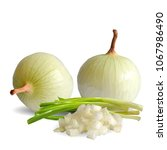 fresh  nutritious  tasty onion. ... | Shutterstock .eps vector #1067986490
