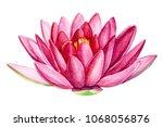pink lotus flower  watercolor... | Shutterstock . vector #1068056876
