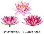 set pink lotus flower ... | Shutterstock . vector #1068057266
