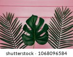 different tropical leaf  on... | Shutterstock . vector #1068096584