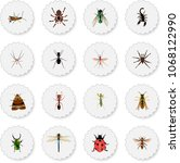 set of insect realistic symbols ... | Shutterstock . vector #1068122990