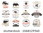 wild animals badges set and... | Shutterstock . vector #1068129560