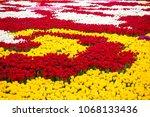 fields of tulips  | Shutterstock . vector #1068133436