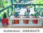vintage decorate house  and shop | Shutterstock . vector #1068181670
