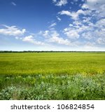 Green Meadow Under Blue Sky...