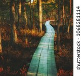 beautiful view of magic swamp... | Shutterstock . vector #1068281114
