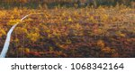 beautiful swamp with small pine ... | Shutterstock . vector #1068342164