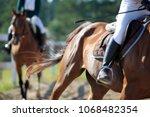 Horse In Motion  Jockey On...