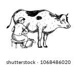 woman milk cow engraving vector ... | Shutterstock .eps vector #1068486020