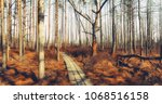 wooden trail in the beautiful... | Shutterstock . vector #1068516158