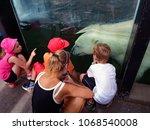 prague czech republic 8 31 17... | Shutterstock . vector #1068540008