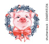 Funny Pig And Christmas Wreath...