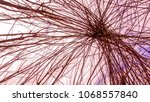 view through the top of an... | Shutterstock . vector #1068557840