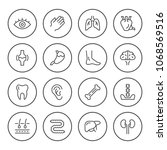 set round line icons of human... | Shutterstock . vector #1068569516
