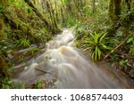 floodwater pouring through the...   Shutterstock . vector #1068574403