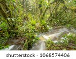 floodwater pouring through the...   Shutterstock . vector #1068574406