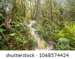 floodwater pouring through the... | Shutterstock . vector #1068574424