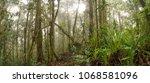 interior of misty montane...   Shutterstock . vector #1068581096