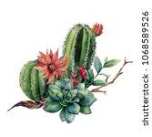 watercolor cactus bouquet. hand ... | Shutterstock . vector #1068589526