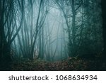 misty fall day in a beautifully ... | Shutterstock . vector #1068634934