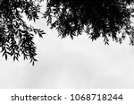 black and white silhouette of... | Shutterstock . vector #1068718244